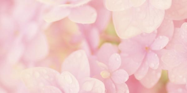 結婚相談所 東京 渋谷 ブログ 20200110b
