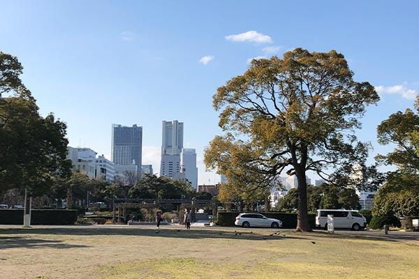 結婚相談所 東京 渋谷 20代 30代 ブログ20200304a