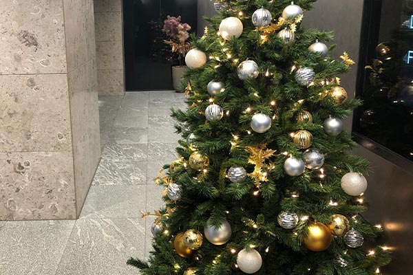 結婚相談所 東京 渋谷 20代 30代 成婚 クリスマスツリー