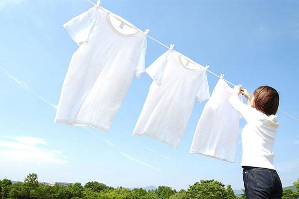 結婚相談所 東京 渋谷 30代 成婚 清潔なシャツ